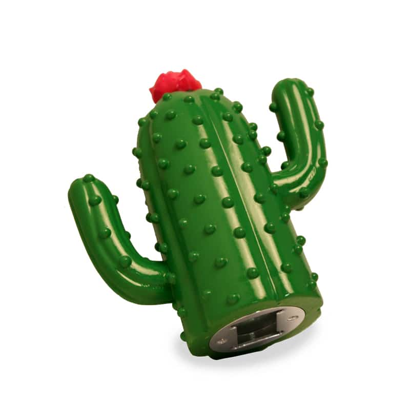 Bottle Opener Cactus, Green, Beer Opener, Shelf Display, Barware, Beerware