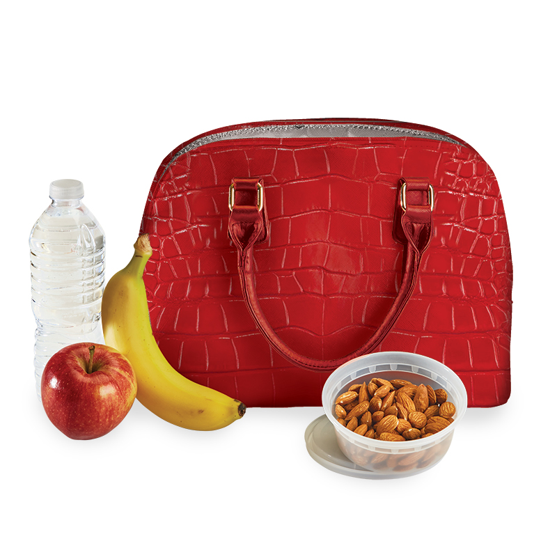 Lunch Carrier Handbag